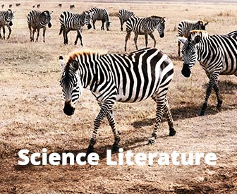 Science Literature Brochure - English