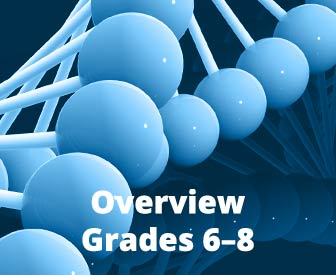 Big Ideas Math®: Modeling Real Life for Grades 6-8 ©2019