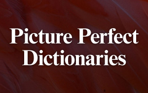 Picture Perfect Dictionaries
